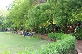 Natural vegetation