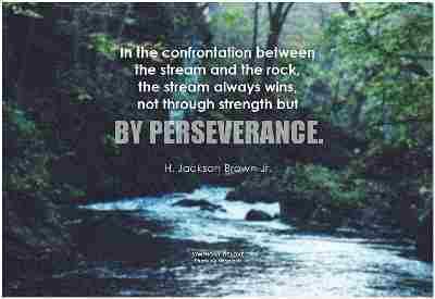Essays on perseverance