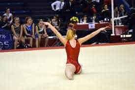 Gymnastics essay