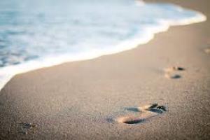 Speech on A day at the Beach (Seashore)