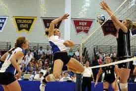 Health Is Wealth Essay Volleyball Essay Argumentative Essay Thesis Statement also Good Proposal Essay Topics Essay On Volleyball  My Favourite Game Volleyball Essays On High School