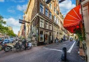 Essay on The Joy of City Life